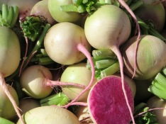watermelon radishes