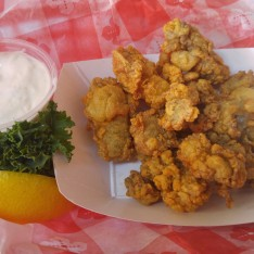 fresh fried oysters