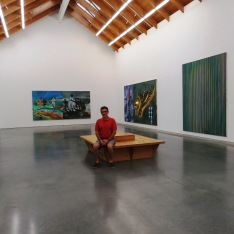 David with paintings