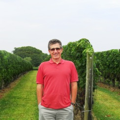 David by the vines