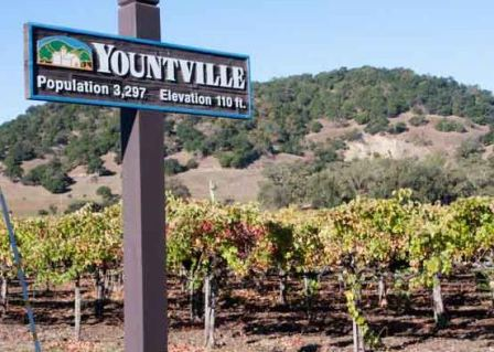 Yountville, CA