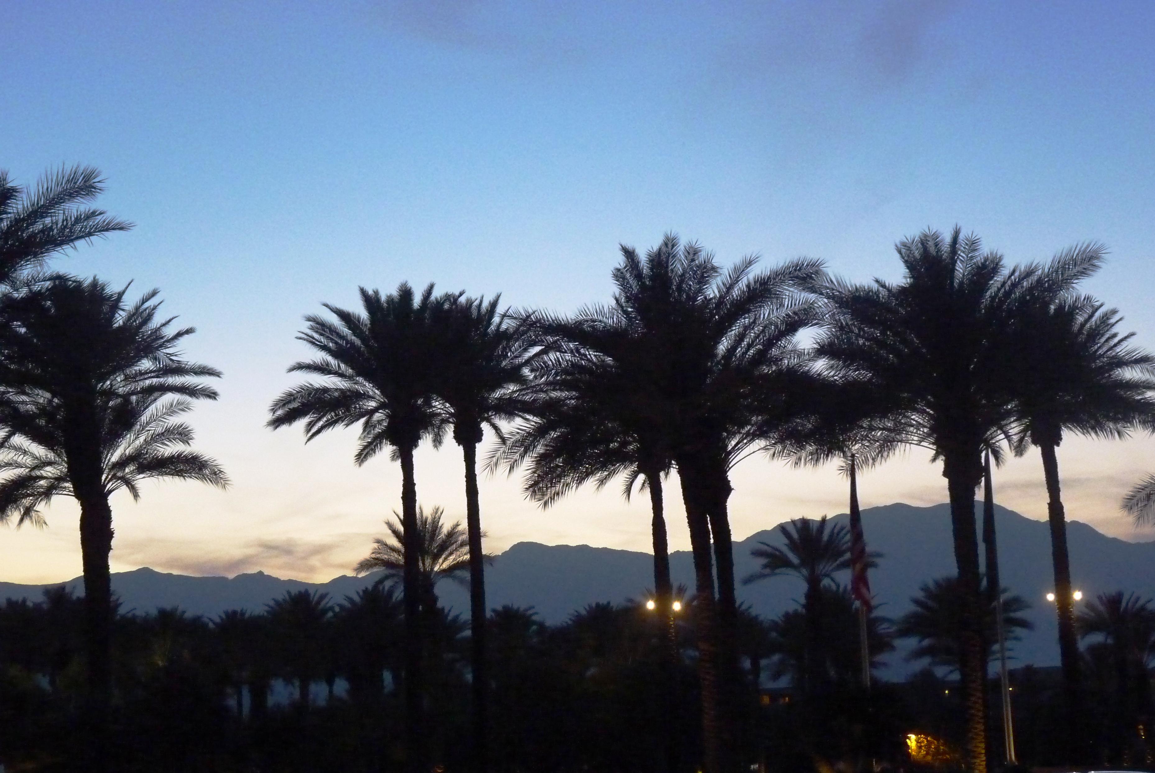 Palm Springs 2013 207